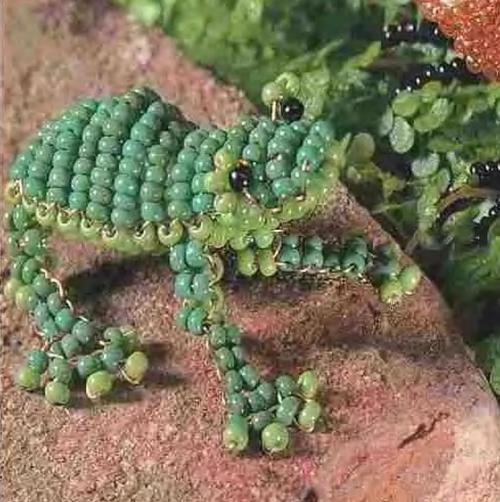 Схема лягушки 2. Зеленая лягушка.