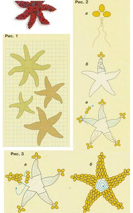 схема морской звезды из бисера. плетениеморской звезды из бисера.