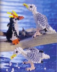 чайка и пингвин