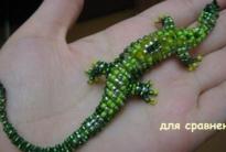 Ящерица (2 вида) и мудрая змея