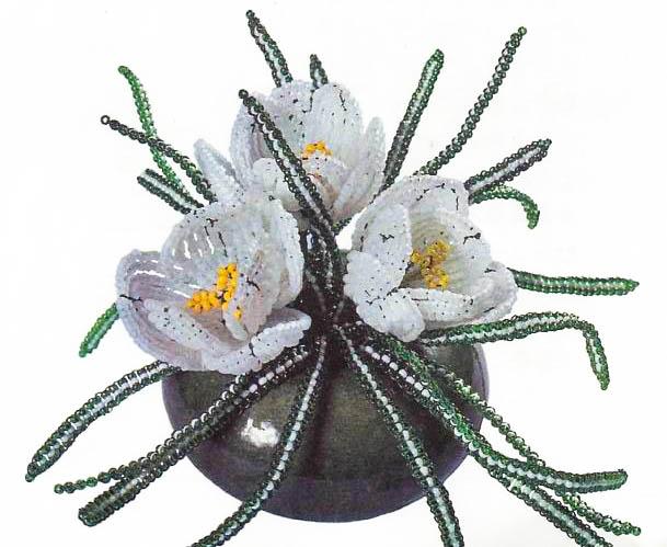 Цветок крокуса состоит из 3