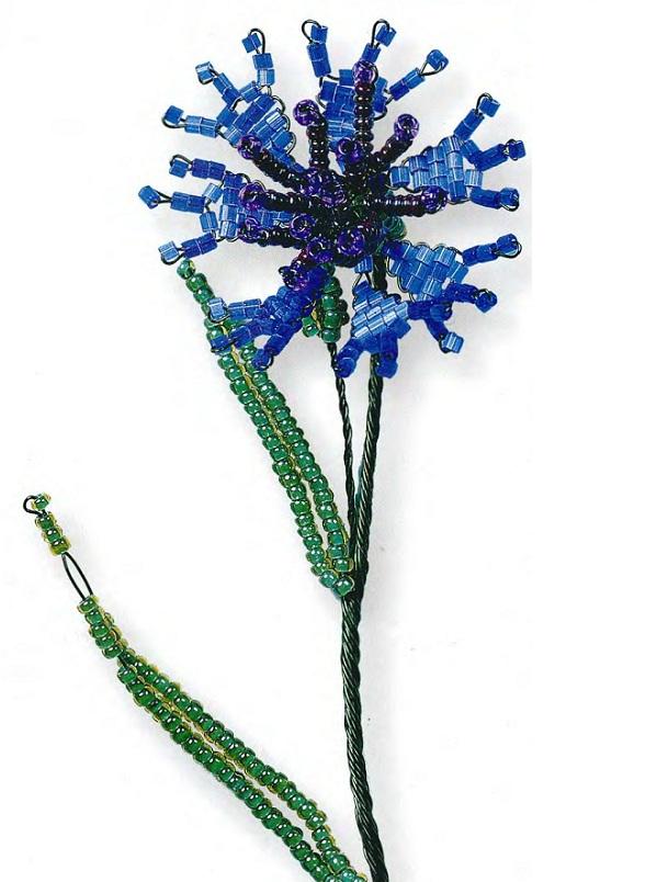 Синий василек / Цветы
