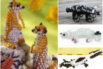 Сурикат и другие животные