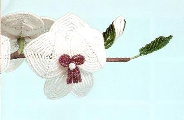 как из бисера сделать орхидею.