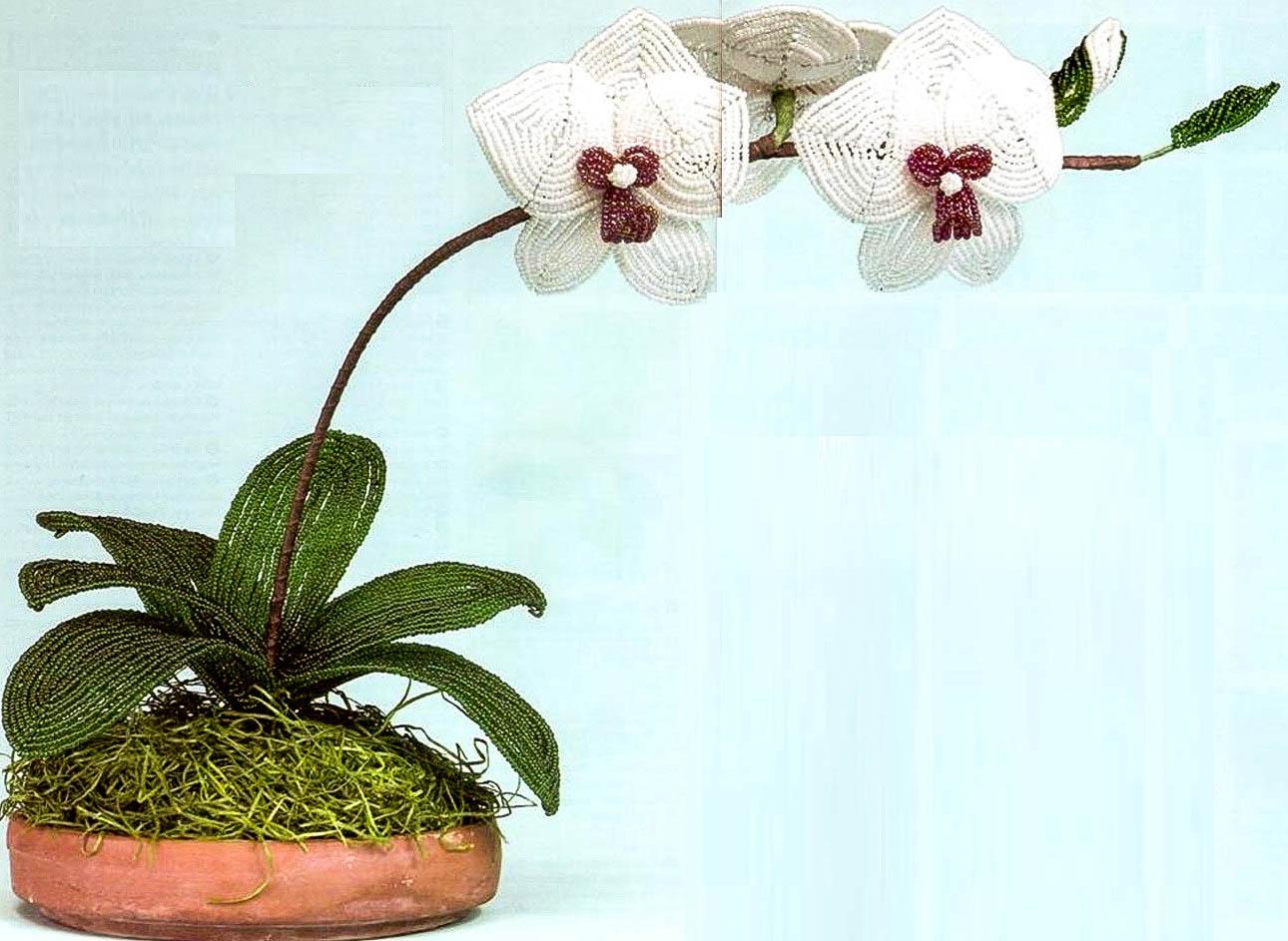 инструкция как сделать из бисера белую орхидею