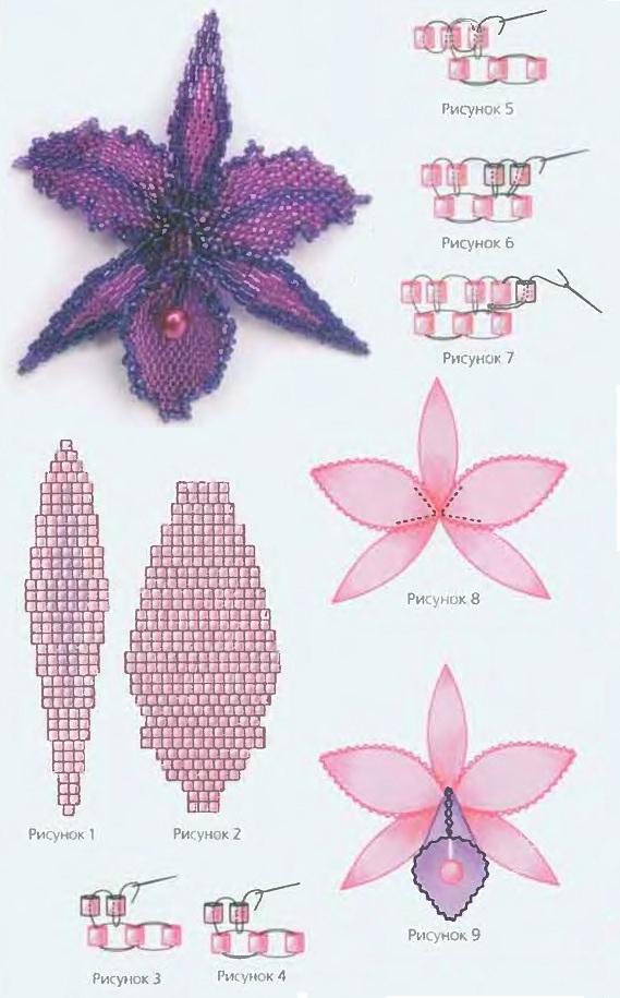 Схемы плетения орхидеи из бисера