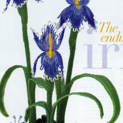 Красивый цветок японского ириса, сплетенный из голубого бисера. Подробное описание техники изготовления и схемы.