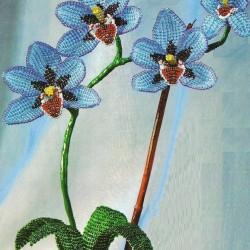 Орхидея сплетенная из бисера. Подробное описание работы и схема.