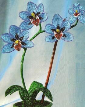белая орхидея из бисера схема - О том, как плести бисером.