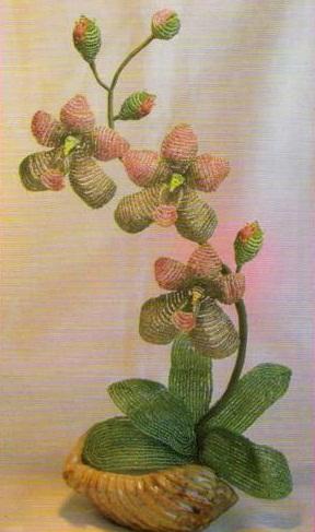 цветок орхидеи из бисера. орхидея сплетенная из бисера.