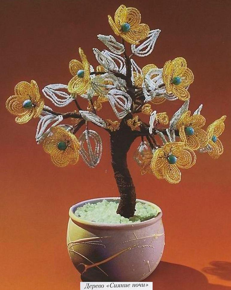 Персик Жанна Д`арк, дерево Сияние ночи.