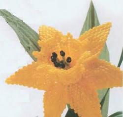 желтый цветок нарцисса