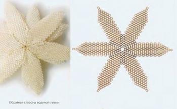 схема белой водяной лилии из бисера
