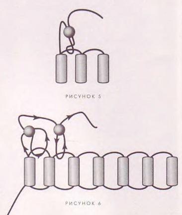 схемы серег из бисера.