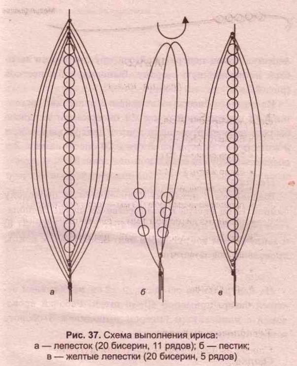 схема ириса из бисера. схема плетения ириса из бисера.