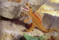 красивые динозавры своими руками