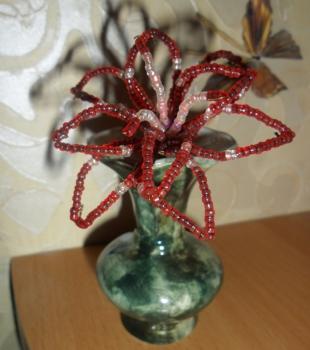 лилия-цветок