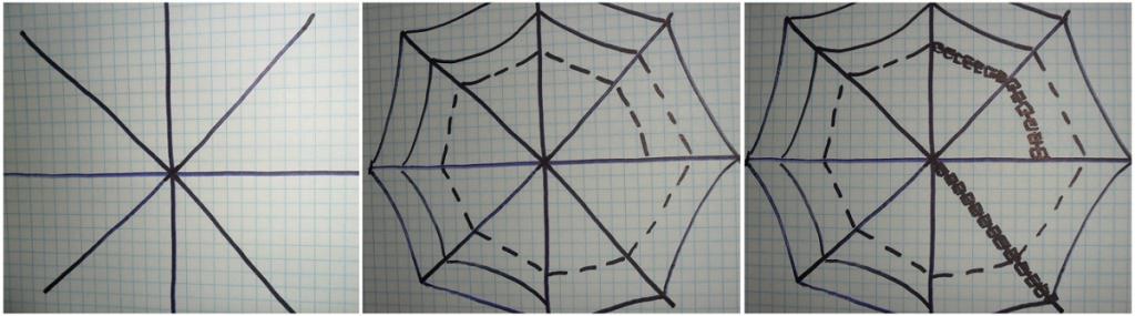 схема паутины. паутина.