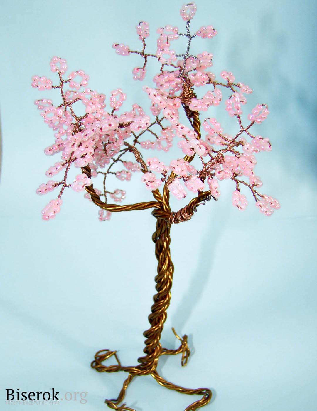 Фото цветов с капельками росы