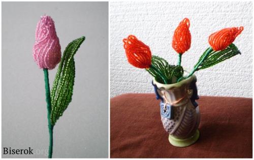 готовые тюльпаны