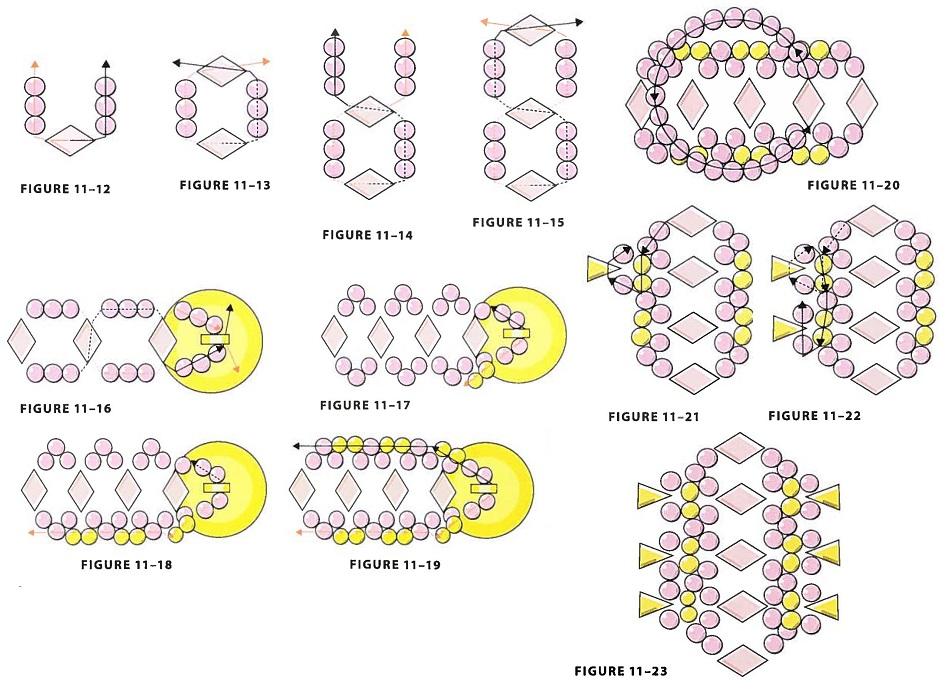 Пошаговая схема плетения браслета из бисера очень проста.  Начните с основной цепочки браслета (рис. 11-12 - 11-15).