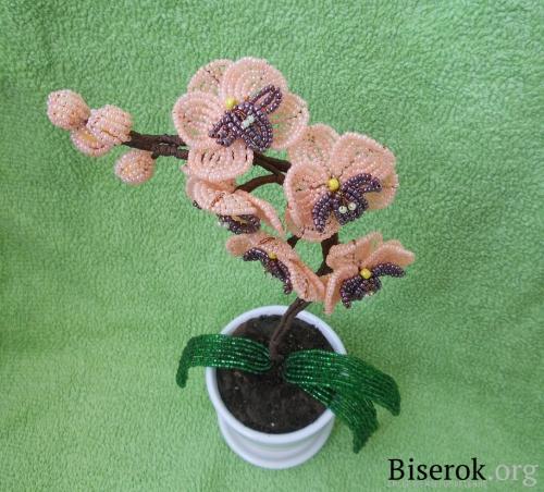 Черная орхидея из бисера
