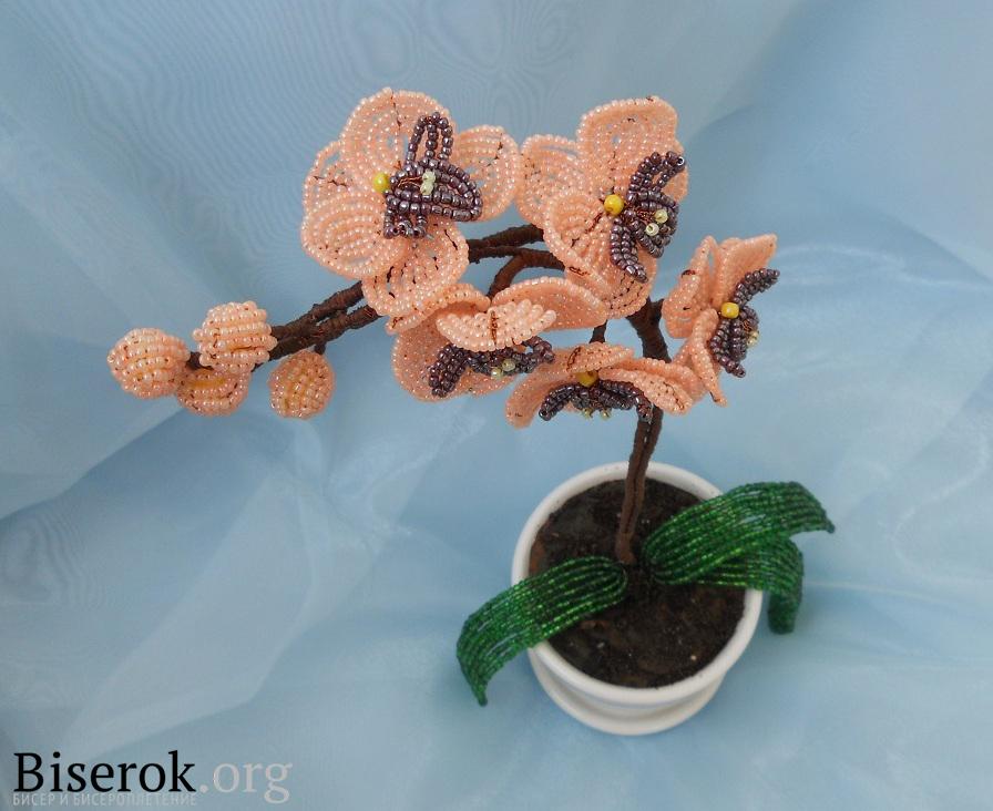 орхидеи из бисера мастер класс схемы - Уголок конструктора.