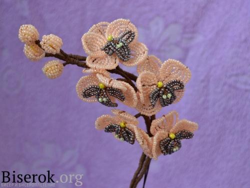 плетение цветов орхидеи