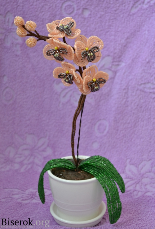 Прочитать целиком.  0. Орхидея из бисера. в цитатник.  В свой цитатник или сообщество!