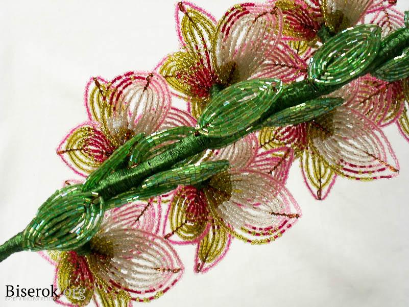 Плетение цветов из бисера.  Вид сзади гладиолусы.