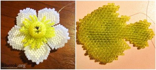 цветок и листок