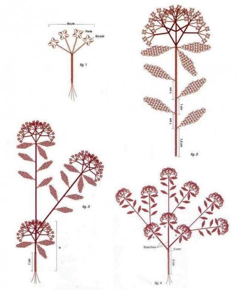 На рисунке выше показана схема строения кустарника, количество веточек и ответвлений.
