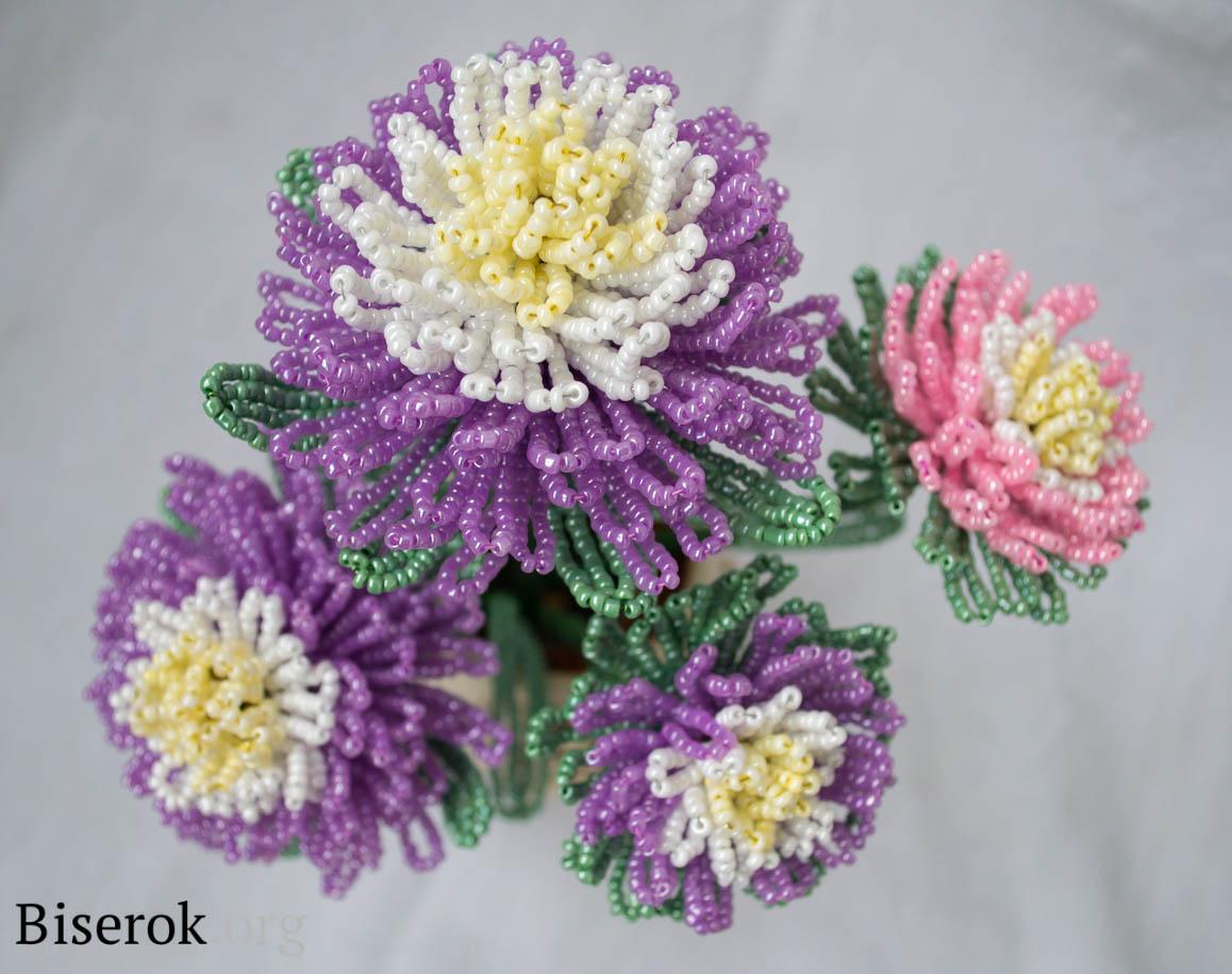 Вязание хризантем мастер класс
