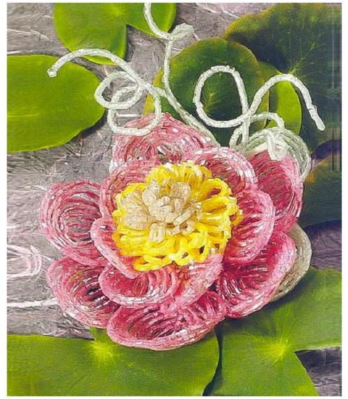 Розовая лилия. Водяная