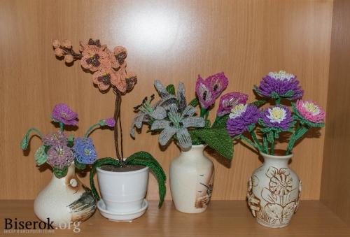 Астра или хризантема / Цветы / Biserok.org - Бисер и.