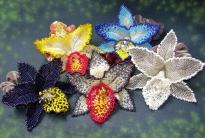 Орхидея мозаичным плетением