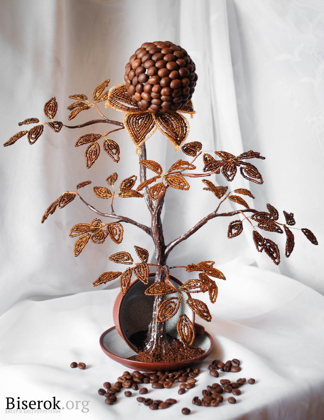 своими руками из цветы зерен кофе