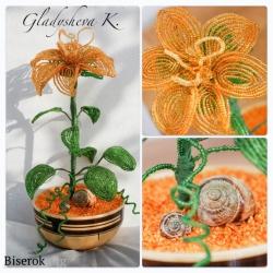 золотистый цветок