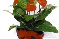 как сплести цветок из бисера