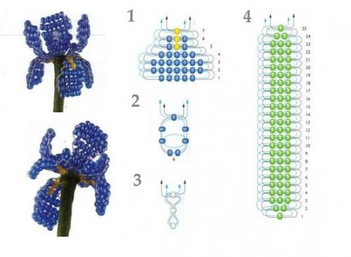 ирис схема плетения. как сплести ирисы из бисера.