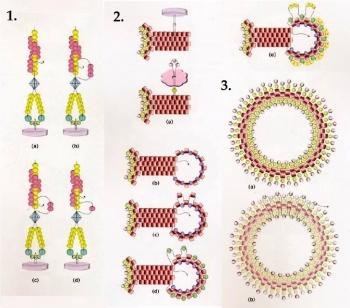 Застёжки для украшений из бисера