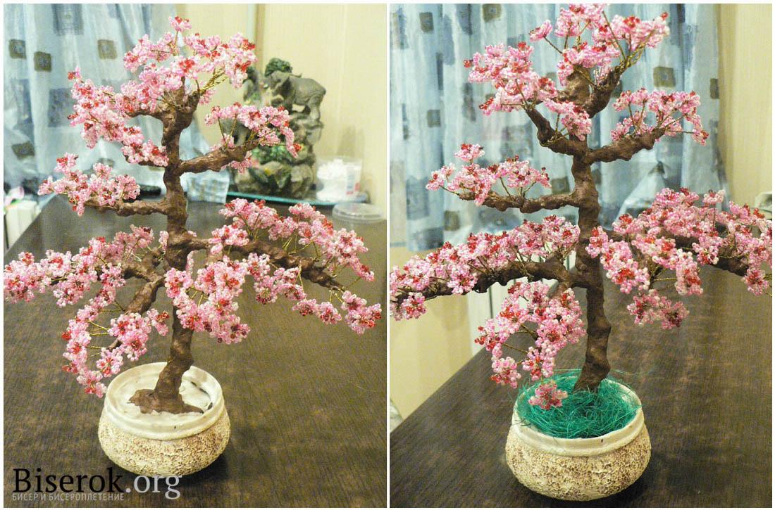 Дерево сакура своими руками фото 806