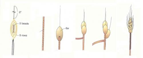 колосы колоски из бисера, схема, французская техника плетения, пшеница