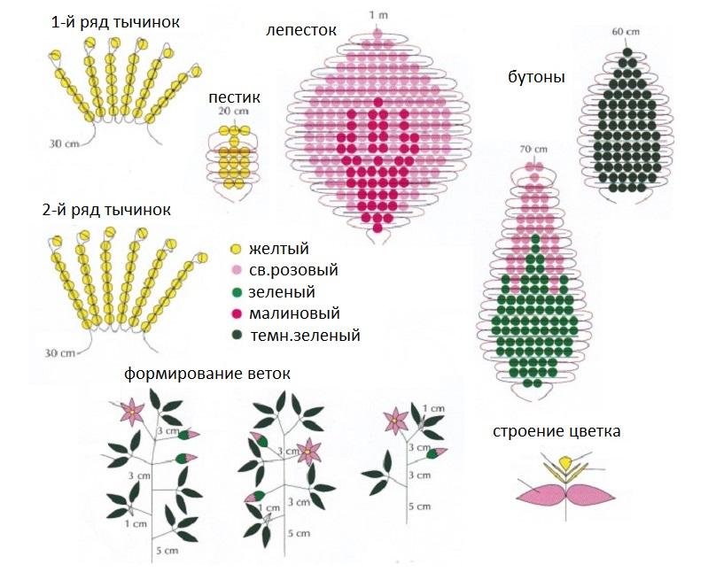 Для одного цветка клематиса
