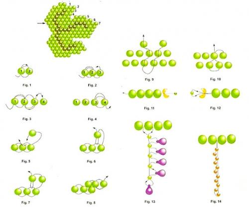 браслет виноградная лоза