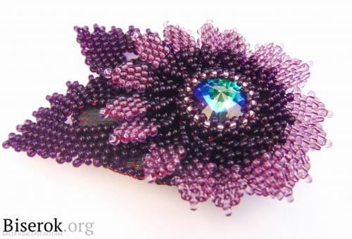цветок фиолетовый