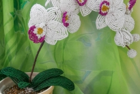 Мастер-класс белая орхидея