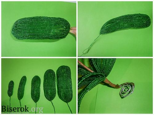 зеленяе листья