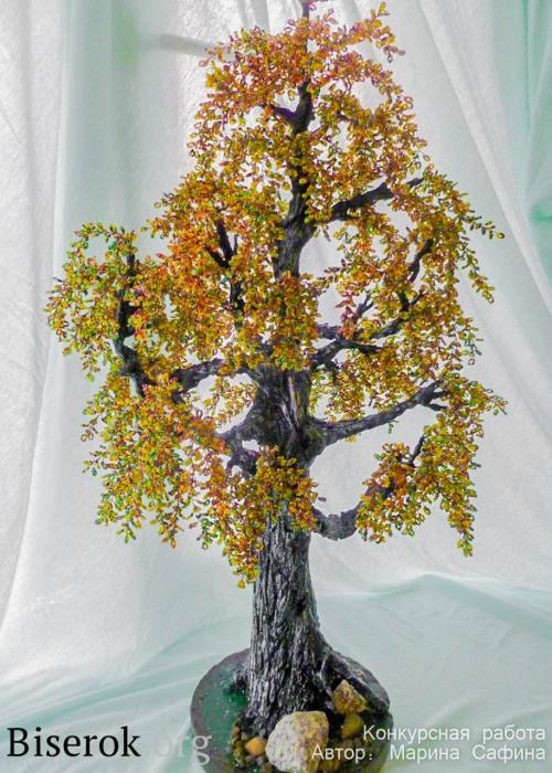золотистое дерево