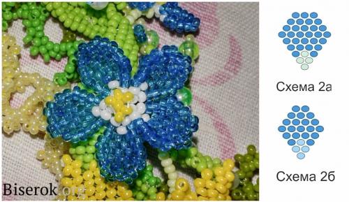 цветок голубой